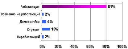Большая коллекция рефератов Отчет по практике Маркетинговая  Рисунок 3 7 Структура потребителей гипермаркета Айсберг по уровню занятости на июль 2010 г